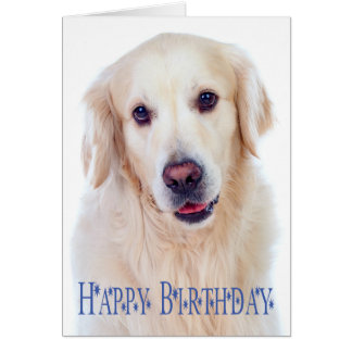 Cartão do cão de filhote de cachorro do golden