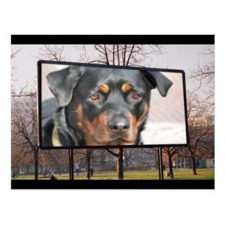 Cartão do cão de Rottweiler