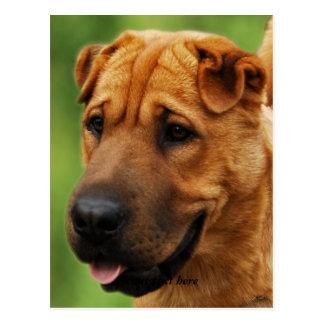 Cartão do cão de Shar Pei