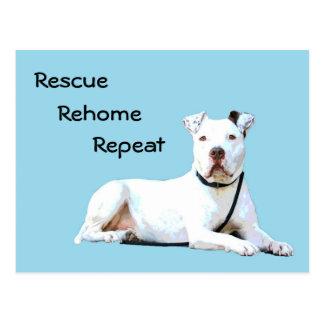 Cartão do cão do salvamento - George o pitbull