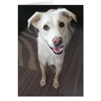 Cartão do cão do smiley - vazio para dentro