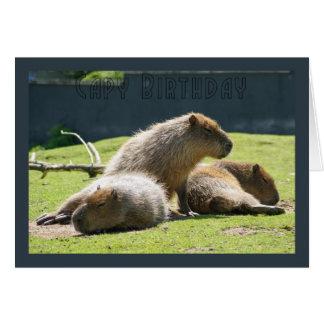 Cartão do Capybara - aniversário de Capy