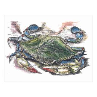 Cartão do caranguejo azul