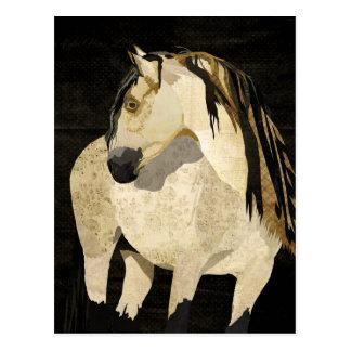 Cartão do cavalo branco cartão postal