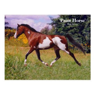 Cartão do cavalo da pintura do primavera