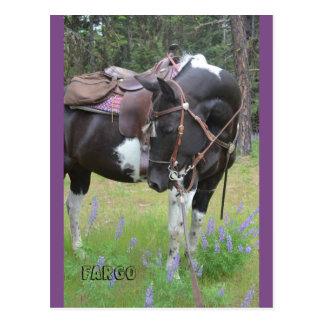 Cartão do cavalo de Fargo da égua do Pinto