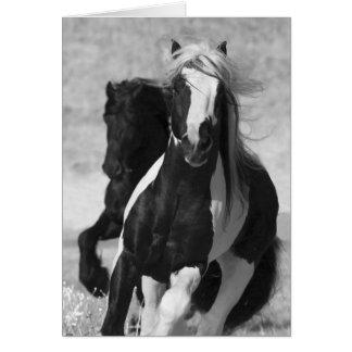 Cartão do cavalo do funcionamento do frisão e do