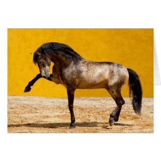 Cartão do cavalo do garanhão de Lusitano