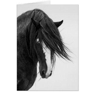 Cartão do cavalo selvagem do retrato de Washakie