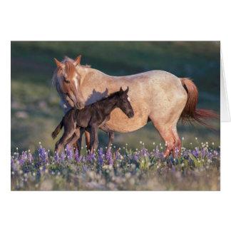 Cartão do cavalo selvagem - Electra & Pandora