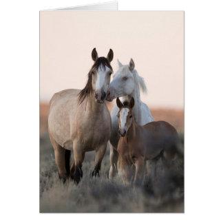 Cartão do cavalo selvagem - família selvagem antes