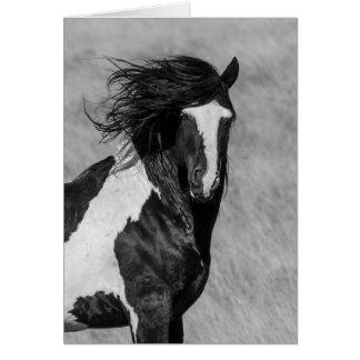Cartão do cavalo selvagem - Washakie no fogo