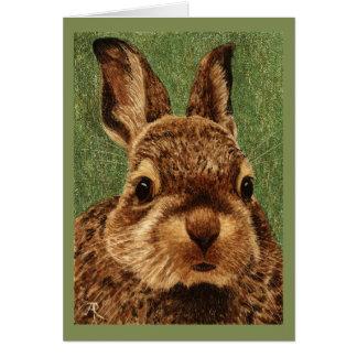 Cartão do coelho de coelho do bebê