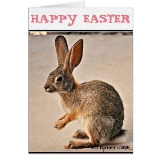 Cartão do coelho de felz pascoa