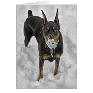 Cartão do cone da neve do Doberman