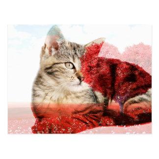 Cartão do coração do gato de gato malhado