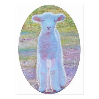 Cartão do cordeiro do primavera