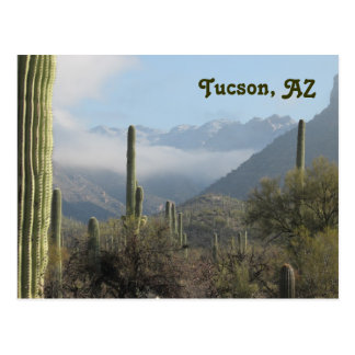 Cartão do deserto da arizona de Tucson