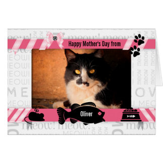 Cartão do dia das mães do Meow do rosa do gato do gato