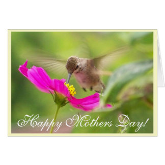 Cartão do dia de mães do colibri