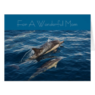 Cartão do dia de mães do golfinho bonito