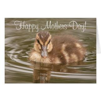 Cartão do dia de mães do patinho