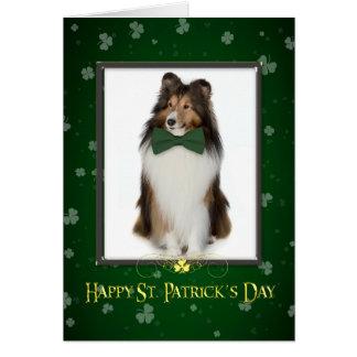 Cartão do dia de Sheltie St Patrick