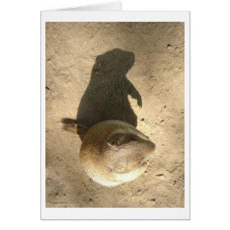 Cartão do dia do porco à terra