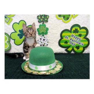 Cartão do dia do St Patrick do bandido (3395)