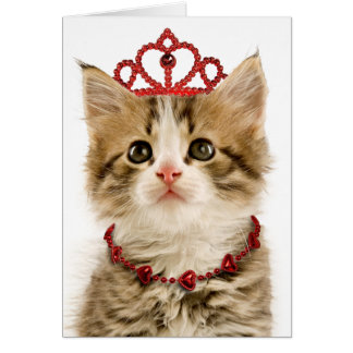 Cartão do dia dos namorados da princesa Gatinho