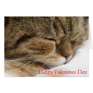 Cartão do dia dos namorados do gato
