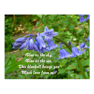 Cartão do ~ dos BLUEBELLS # 3
