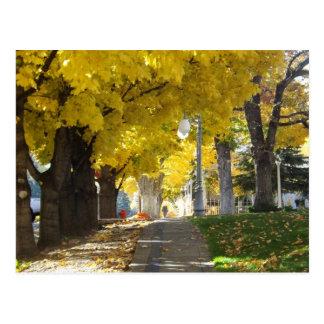Cartão do dossel do outono