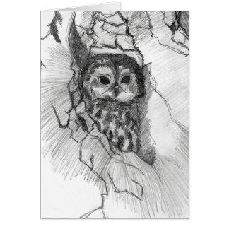 Cartão do esboço da coruja por Nicole Janes