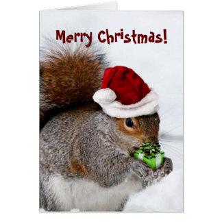 Cartão do esquilo do Feliz Natal