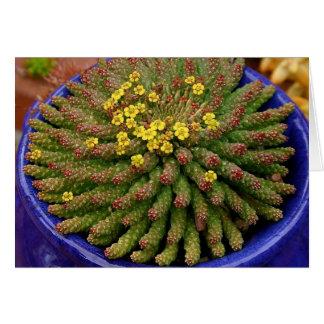 Cartão do eufórbio do Succulent por Debra Lee