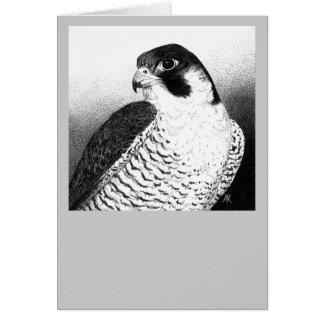 Cartão do falcão de peregrino