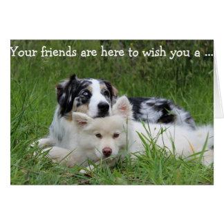Cartão do feliz aniversario: Cães - os melhores