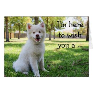 Cartão do feliz aniversario com cão