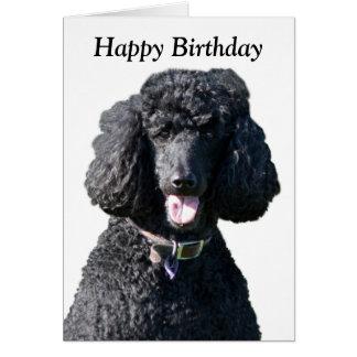Cartão do feliz aniversario da foto do cão de