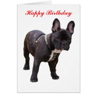 Cartão do feliz aniversario de buldogue francês