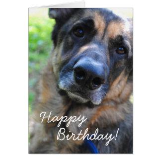 Cartão do feliz aniversario de cão de german sheph