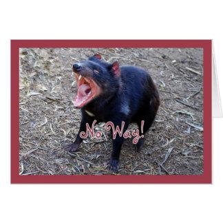 Cartão do feliz aniversario de diabo tasmaniano