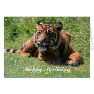 cartão do feliz aniversario de filhote de tigre