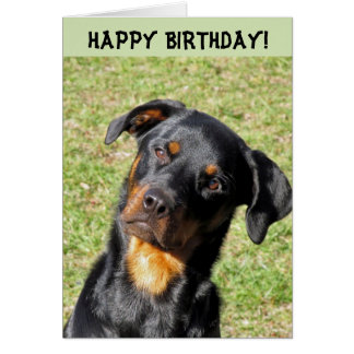 Cartão do feliz aniversario de Heidi