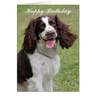 Cartão do feliz aniversario do cão do Spaniel de