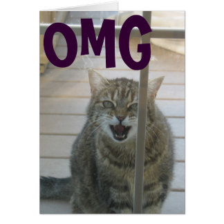 cartão do feliz aniversario do gato do omg