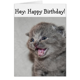 Cartão do feliz aniversario: Gatinho cinzento