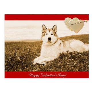 Cartão do feliz dia dos namorados do Malamute do