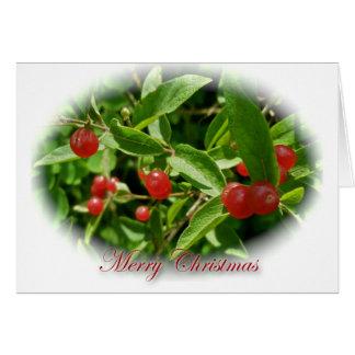 Cartão do Feliz Natal das bagas da madressilva